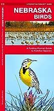 Nebraska Birds: A Folding Pocket Guide to Familiar Species (Wildlife and Nature Identification)
