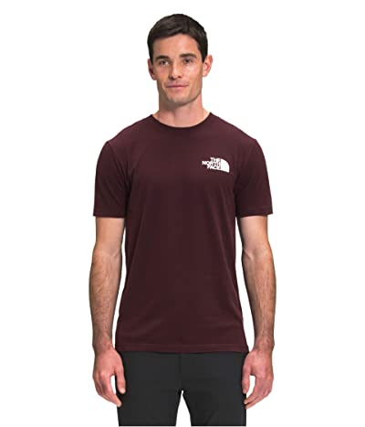 The North Face Box Nse Short Sleeve Tee (Root Brown) Men