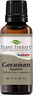 Plant Therapy Geranium Egyptian Essential Oil | 100% Pure, Undiluted, Natural Aromatherapy, Therapeutic Grade | 30 milliliter (1 ounce)