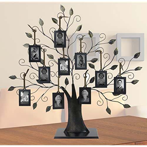 Family Tree Photo Frames Amazoncom