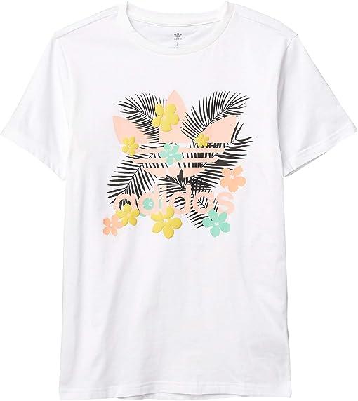 White/Multicolor