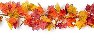 Best fall door garland Reviews