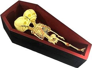 Asylum Zone Deluxe Conjoined Siamese Twin Skeleton in Coffin