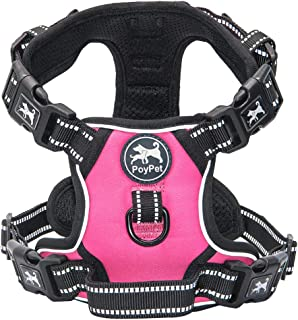 PoyPet 2019 Upgraded No Pull Dog Harness with 4 Snap Buckles, Reflective with Front & Back 2 Leash Hooks and an Easy Control Handle [NO Need Go Over Dog's Head]