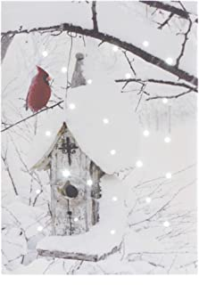 Oak Street Cardinals with Birdhouse LED Art 8