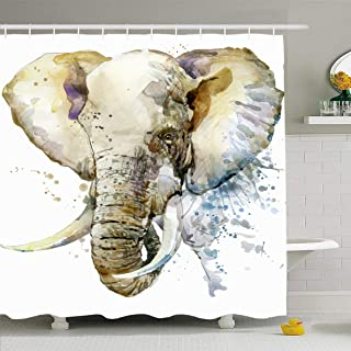 paisley splash elephant