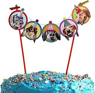 Dachshunds Cake Garland, photographic dog birthday party decoration