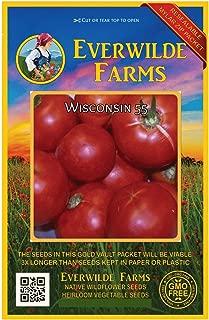 wisconsin 55 tomato plants