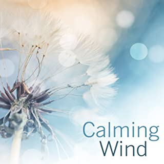 Calming Wind: 30 Relaxing Sounds for Positive Energy, Self Hepnosis Therapy, Gentle Sounds of Wind Chimes for Deep Sleep, Meditation & Yoga