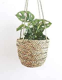 Best rattan hanging planter Reviews