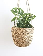 Natural Seagrass Hanging Planter – Handmade Indoor Flower Pot Holder – for Succulents, Air Plants and Small Cacti