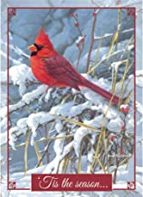 Legacy Publishing Group Boxed Holiday Greeting Cards, Tending His Flock (HBX32751)