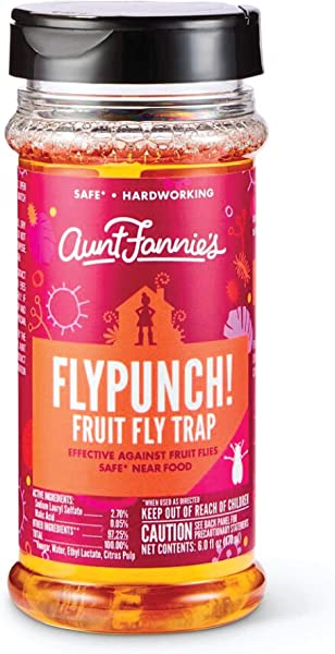 Aunt Fannie S FlyPunch Non Toxic Fruit Fly Trap Kill Fruit Flies For Indoor Use Single Pack