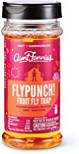 Aunt Fannie's - FlyPunch Non-Toxic Fruit Fly Trap - Kill Fruit Flies - For Indoor Use (Single Pack)