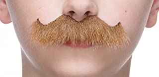 Mustaches Fake Mustache, Self Adhesive, Novelty, Small Rocking Grandpa's False Facial Hair, Costume Accessory for Kids
