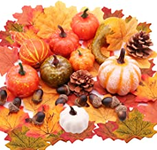 Best decorating with gourds for thanksgiving Reviews