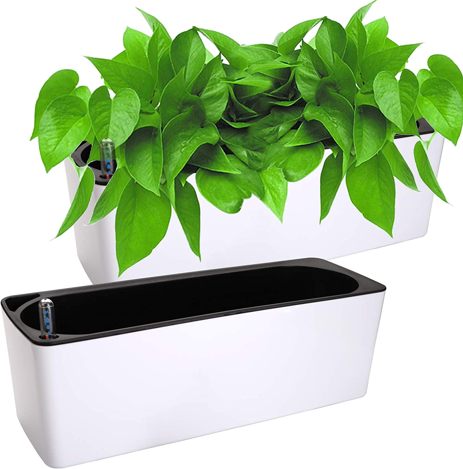 Fasmov 2 Pack Rectangle Self Watering Planter with Water Level Indicator, Window Gardening Box, Decorative Planter Pot for All House Plants Flowers Herbs, Modern Decorative Planter Pot, 16x 5.5 Inch