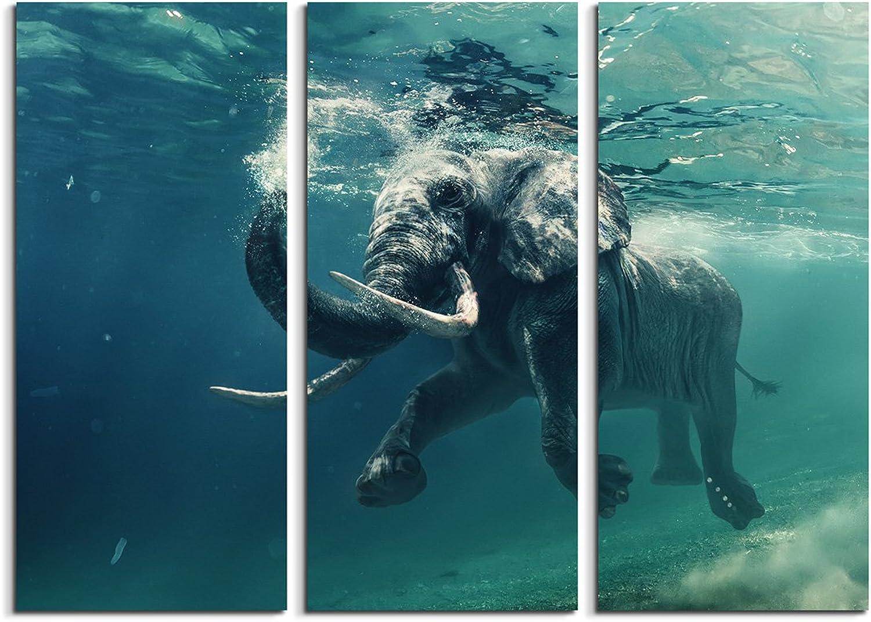 Sinus Art 3 teiliges Leinwandbild gesamt 130x90cm Tierfotografie – – – Schwimmender Elefant unter Wasser B06XX41PX5 e1545b