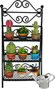 SAMCAMI Dollhouse Furniture Flower Stand Set (11pieces) - Vintage Metal Plant Stand and Other Miniature Accessories for 1 12 Scale Dollhouse Balcony Decoration (Black)