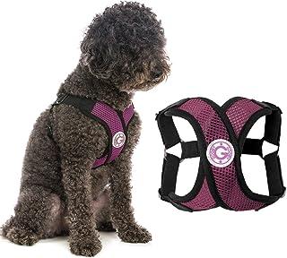 Gooby Choke Free Comfort X Step-In Dog Harness, Small, Purple