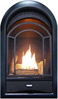 ProCom Vent-Less Fireplace Insert Thermostat Control Arched Door, Model#- PCS100T, 10000 BT