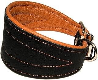 Real Leather Extra Wide Padded Tapered Dog Collar Glossy Black Greyhound Saluki Deerhound Lurcher Whippet Dachshund