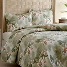 TB 3 Piece Queen Tropical Themed Quilt Set Sage Green, Peach Tinged Orchids Floral Pattern, Lightweight Summer Bedding, All Over Flowers Design, Gorgeous & Beautiful