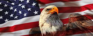 AMERICAN USA FLAG EAGLE PICK-UP TRUCK BACK WINDOW GRAPHIC DECAL PERFORATED VINYL (Large 65