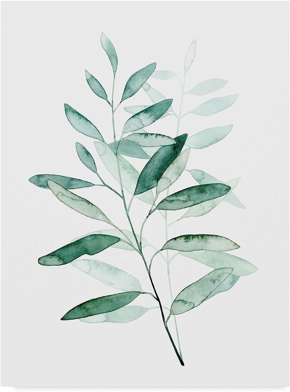 Trademark Fine Art Serene Reed I by Grace Popp, 14x19