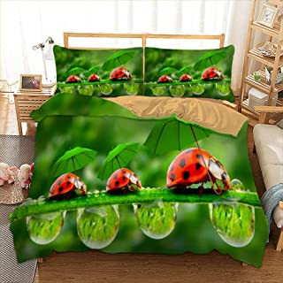 QADLDDBV® Sets De Housse De Couette 220X240 Cm Coccinelle Insecte Coloré avec 2 X Taies d'oreiller, 3D Parure De Lit À Imp...
