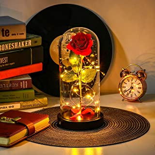 Unomor Beauty and The Beast Rose, Rose Gift for Christmas Holiday Party Wedding Anniversary Home Decor - 2 Light Modes, USB Plug & Battery Powered Red Rose in Glass Dome with Gift Box & Card