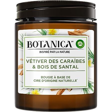 Airwick Botanica Bougie Parfumée Cire d'Origine Naturelle Vétiver des Caraïbes/Bois de Santal 205 g