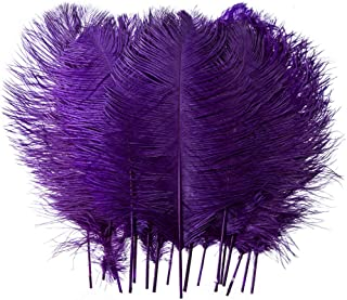 10pcs Real Natural Ostrich Feathers for Home Decoration DIY Craft (Purple, 12-14 inches (30-35cm))