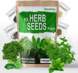SavvyGrow Heirloom Herb Seeds (10 Type) – Survival Garden Seeds for Planting Include Basil, Mint, Cilantro, Dill - Open Pollinated, 85% Plus Germination Rate, Non-GMO & Source in USA Plant Herbs(Herb)