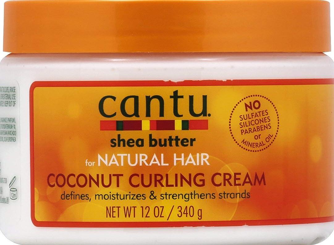 ドット数字不正直Cantu Shea Butter for Natural Hair Coconut Curling Cream 340g