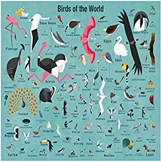 BR &Nameinternal - Birds of The World 35x28 Posters That Stick, by Daviz