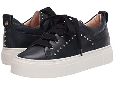 AGL Gold Stud Trim Sneaker (Navy) Women