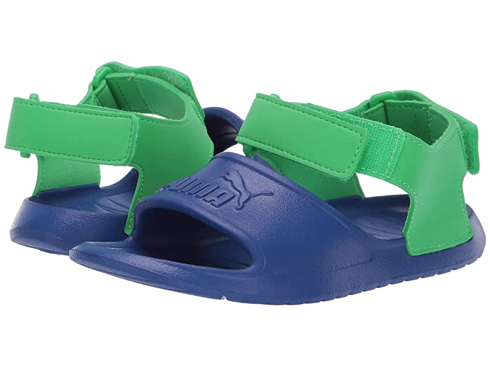 Puma Kids Divecat Injex (Little Kid) (Surf the Web/Irish Green) Kid