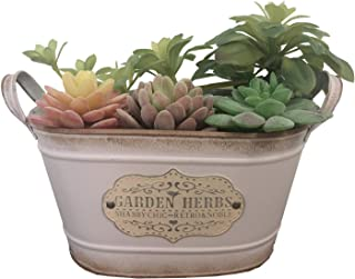 Ashley ZC Vintage Style Metal Planters,Rustic Country Style Iron Flower Pot - Oval Garden Succulent Container with ...