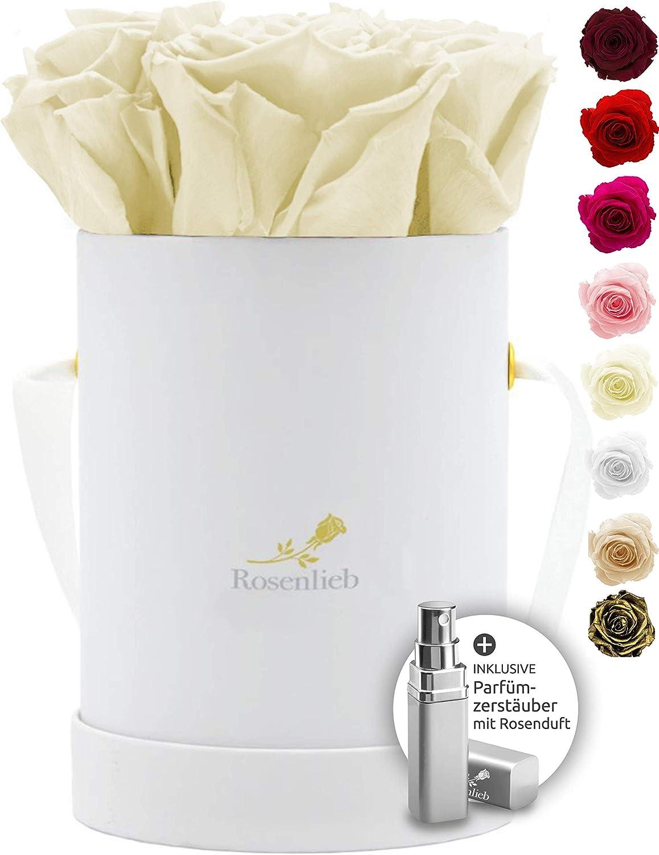 Rosenlieb Rosenbox mit 9 Infinity Rosen   Echte konservierte Blumen 3 Jahre haltbar Medi Bella Wei/ß, Cream Flowerbox Inklusive Gru/ßkarte