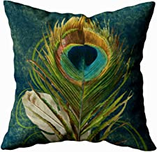 TOMKEY Hidden Zippered Pillowcase Vintage Teal Peacock Feather 20X20Inch,Decorative Throw Custom Cotton Pillow Case Cushion Cover for Home Sofas,bedrooms,Offices,and More