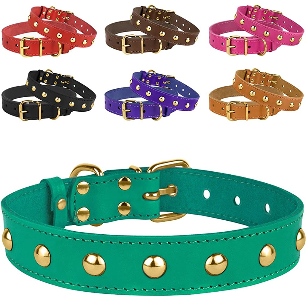 BronzeDog Leather Studded Dog Collar, Brass Plated Hardware Pet Collars for Cats Puppy Small Medium Large Dogs Red Pink Purple Black Brown Turquoise