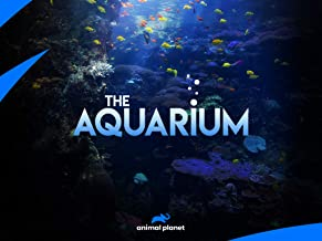 The Aquarium Season 2