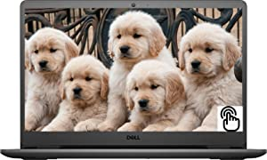 Newest Dell Inspiron 3505 15.6