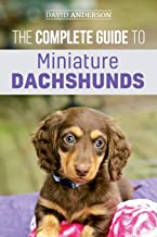 The Complete Guide to Miniature Dachshunds: A step-by-step guide to successfully raising your new Miniature Dachshund