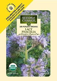 phacelia seeds for sale