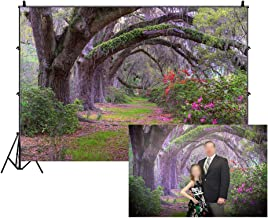 LFEEY 10x8ft Gorgeous Garden Park Scenery Backdrop Old Tree Lined Path Flowers Blooming Trees Green Plants Jungle Photography Background for Parties Events Photo Studio Props