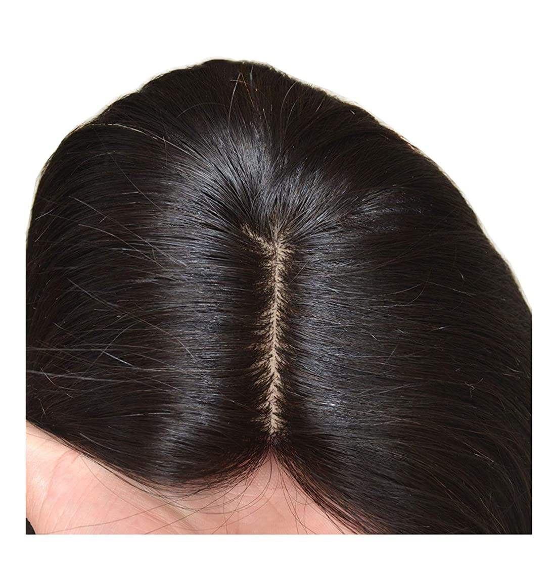 Silk Base Lace Front Human Hair Wigs For Women Indian Remy Hair Body Wave Lace Front Wig With Baby Hair Pre Plucked Hairline,10inches