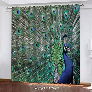 CoSept Window Curtains,Peacock Displaying Elongated Majestic Feathers Open Wings Picture,for Living Room,Set of 2 Curtain Panels,51.96x96.45 Inch,Navy Blue Green Light Brown