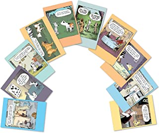 10 'Dog Days Birthday Assortment' Note Cards w/ Envelopes - Assorted and Boxed Greeting Cards - Funny Cartoon Bday Cards for Friends, Family, All Ages - Stationery Notecards 4.63 x 6.75 inch A2665BDG